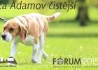Účinnější postih majitelů psů za znečišťování