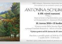 Výstava: ANTONÍN SCHUMANN