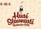 Cyklovýlet do Boskovic na Husí slavnosti