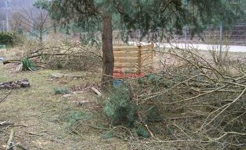 Upozornění na ořez stromů