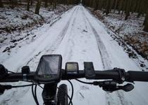 Lednová výzva – do práce na kole