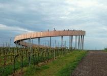 Vycházka Stezka mezi vinohrady
