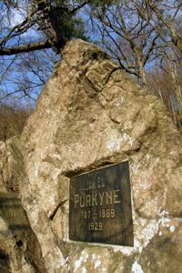 Památník J. E. Purkyně